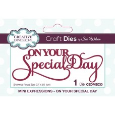 Creative Expressions - Mini Expressions - On Your Special Day
