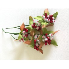 Stamens - Red Berry Cluster
