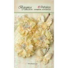 Petaloo - Botanica Collection - Mums & Butterflies - Ivory