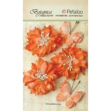 Petaloo - Botanica Collection - Mums & Butterflies - Peach