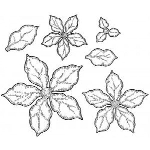 Creative Expressions - Shaded Poinsettia Stamp Set